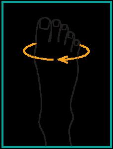 Ортопедични обувки Solidus - пиктограма за размер